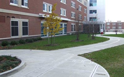SUNY Cortland Site Restoration & Landscaping