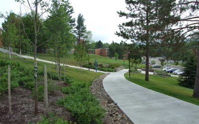 SUNY Oneonta Sidewalk Renovation